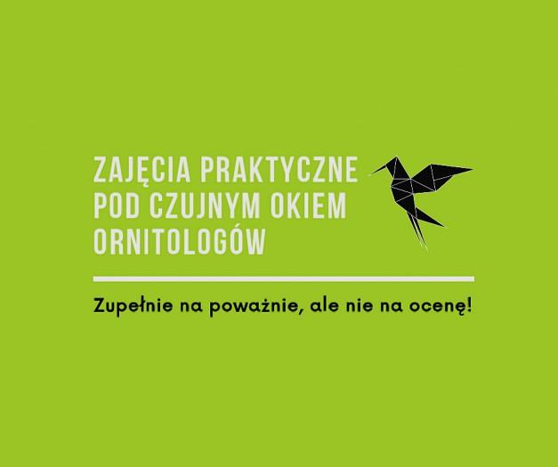 Ptaki z Borowej Oleśnickiej